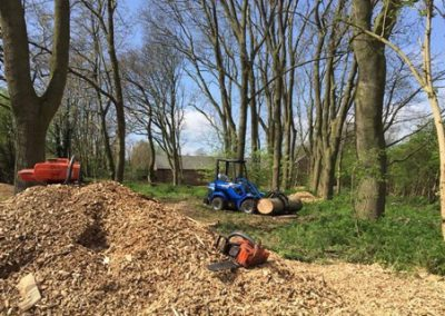 Tree Removal and Pruning Clarkhall Farm, Woodland Restoration, Wakefield