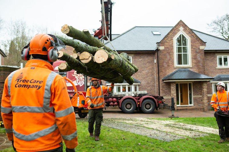 Subsidence Tree Removal, Headingley, Leeds