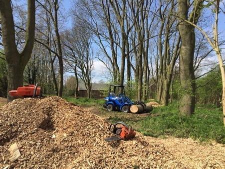 Tree Removal and Pruning Clarkhall Farm, Woodland Restoration, Wakefield